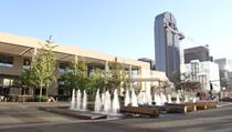 达拉斯官方区域中心, 真正的公私合作制 - City of Dallas Regional Center